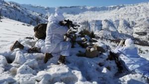 Alçak Terör Örgütü PKK'ya Eren Operasyonlarında Büyük Darbe