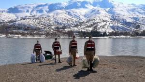 Hazar Gölü'nün 'Uzun Kulaklı Sakinleri' Jandarmanın Şefkatli Elleriyle Besleniyor