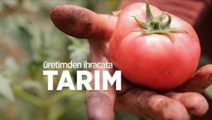 Üretici kırsal kalkınma destekleriyle güçleniyor